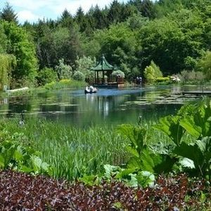 Himalayan Garden & Sculpture Park NGS Open Day