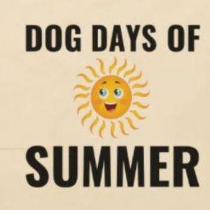 Dog Days Of Summer Mimosa SundayPop Up Market