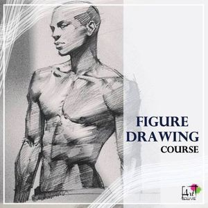 Figure Drawing course (24 Hrs.)