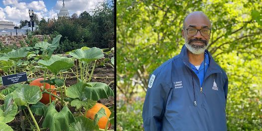 Seasonal Vegetable Gardening (Online Q&A), 1 October | Online Event | AllEvents.in