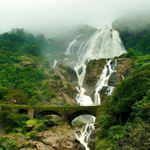 Brimming Waterfall of Dudhsagar