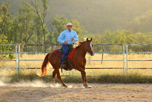 3 spots True Horsemanship rewards good behaviourspartnership