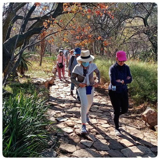 Senior Citizen's Hike at The Wilds, 25 May | Event in Johannesburg | AllEvents.in