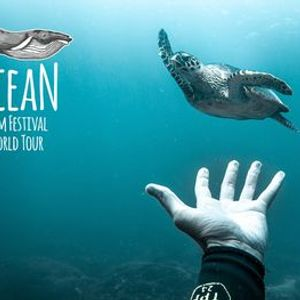 Ocean Film Festival - Leamington Spa - 31 October 2020