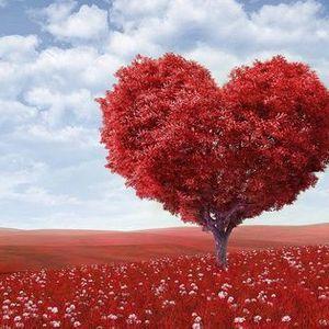 Leef vanuit je hart Let op datum is gewijzigd