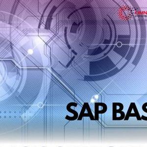 SAP BASIS Introduction Free Workshop