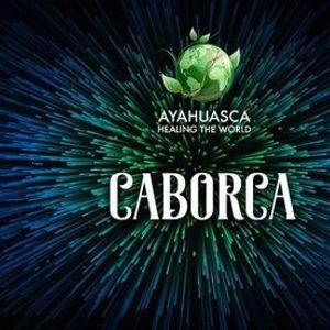 Ayahuasca y Bufo Alvarius en Caborca Son.