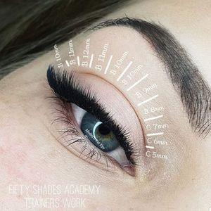 BELFAST Volume Eyelash training