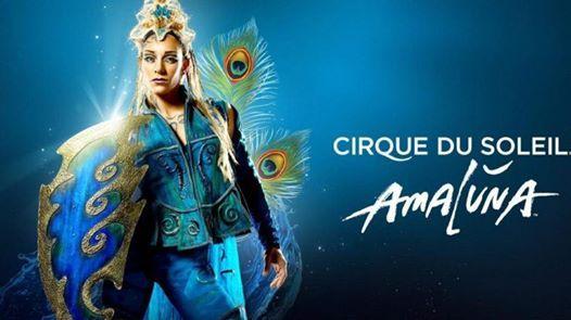 Cirque du Soleil Amaluna Benefit for Huckleberry  Jan. 9 2020