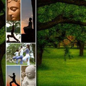 Retiro de Yoga con Meditacin Budista
