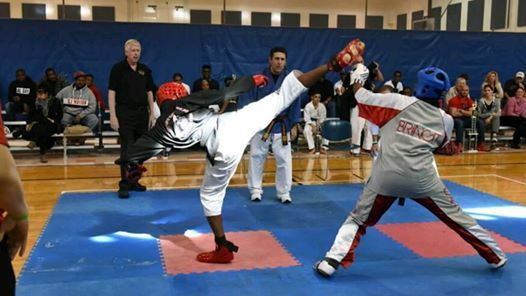 The Clearwater Open Karate Championships
