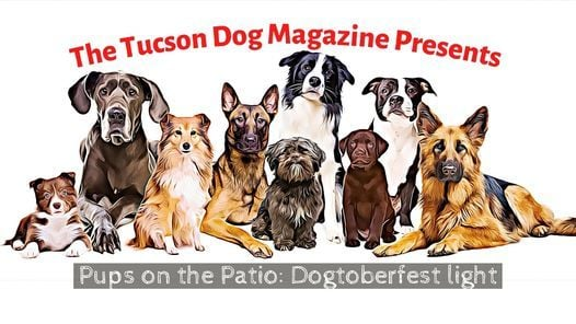 PUPS on the PATIO DOGTOBERFEST Light, 24 October | Event in Tucson | AllEvents.in