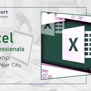 Excel for HR Professionals  R 20  Nasr City