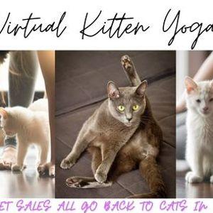 Virtual Kitten Yoga