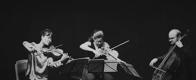 Trio Boccherini  String Duos & Trios