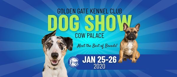 2020 Dog Show.Golden Gate Kennel Club Dog Show 2020 At Cow Palace Daly City
