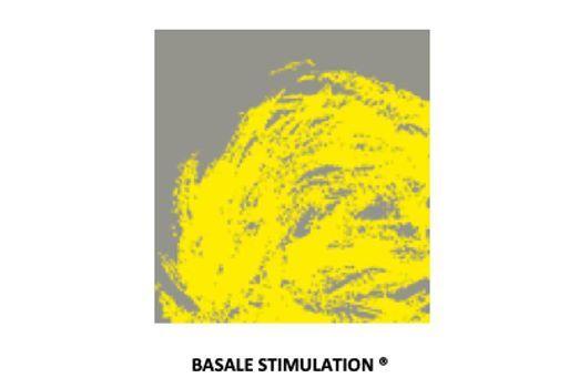 Stimolazione Vibratoria seminario stimolazione basale