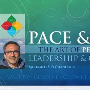 Pace & Lead The Art of Persuasion Leadership & Coaching