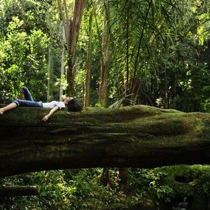 Forest Bathing - Time to Rethink your Relationship with Nature