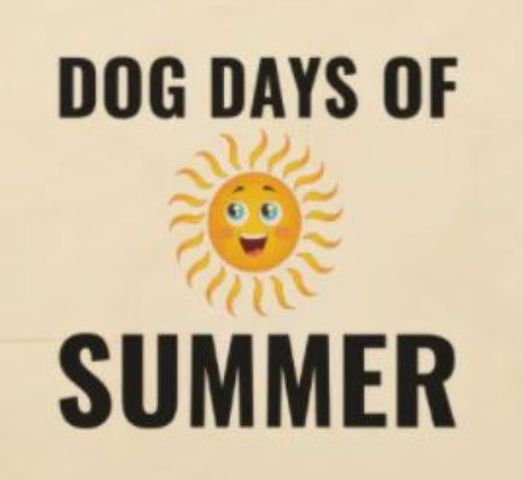 Dog Days Of Summer Mimosa Sunday/Pop Up Market, 15 August   Event in New Bern   AllEvents.in