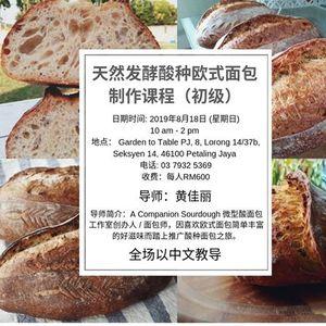 Beginner sourdough breadmaking class (Chinese)