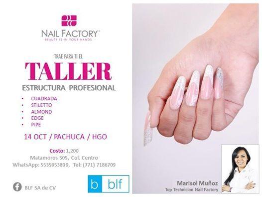 Pachuca. Taller Estructuras Profesional- Marisol Moz