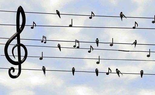 Sing Dich frei Energieblockaden lsen durch Heilkraft der Stimme