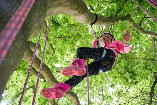 Great Big Tree Climbing at Cliveden