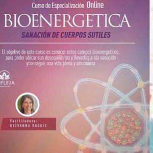 CURSO BIOENERGTICA - Sanacin de Cuerpos Sutiles Con Giovanna Raggio - Junio