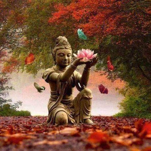 Meditazione Ed Espressione Artistica