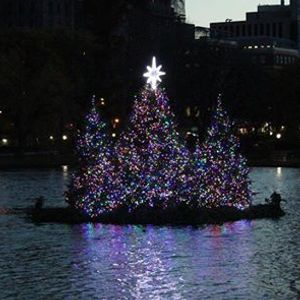 Free - Central Park Tree Lighting