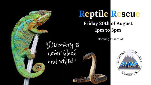 Reptile Rescue, 20 August | Event in Swansea | AllEvents.in