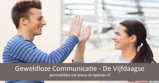 Vijfdaagse introductietraining (summer course)