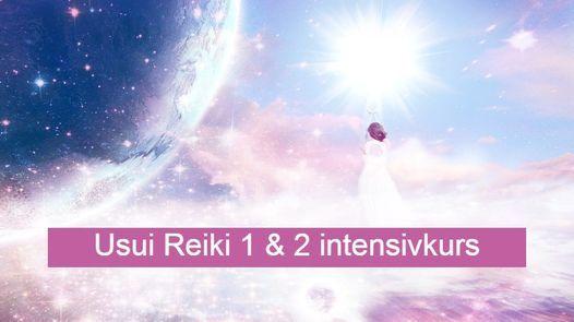 Reikikurs 1 & 2 Göteborg, 11 September | Event in Gothenburg | AllEvents.in