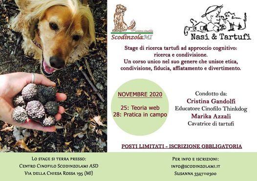 RIcerca Tartufi, 25 November | Event in Milano | AllEvents.in