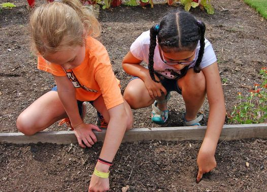 Young Naturalist Series: Explorers, 5 August | Event in Fort Wayne | AllEvents.in