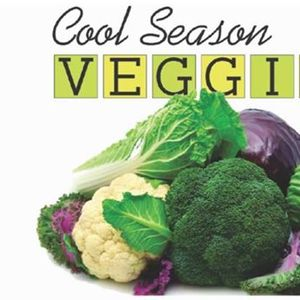 Cool Season Veggies - Yountville Workshop