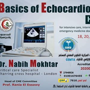 Basics of Echocardiography course