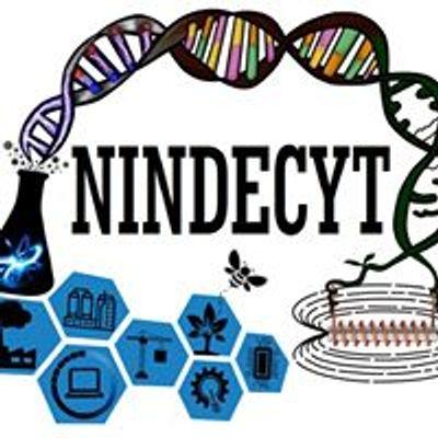 Nindecyt
