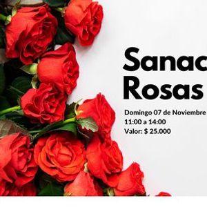 Online Sanacin con Rosas Etricas