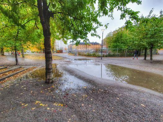 Fatburen - den hemliga sjön, 11 May   Event in Stockholm   AllEvents.in