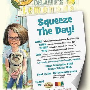 Delanies Lemonade Stand Adoption Fair