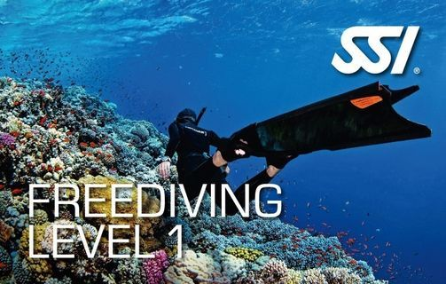 SSI Freediving Level One Course, 29 May   Event in Plymouth   AllEvents.in