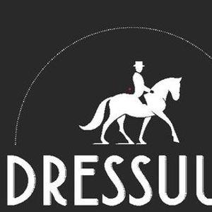 Indoor dressuur paarden klasse BB tm M2