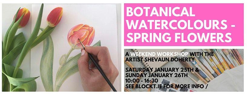 Spring Flowers in Watercolour  A Weekend Workshop