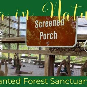 Yoga in Nature at the Enchanted Forest Sanctuary