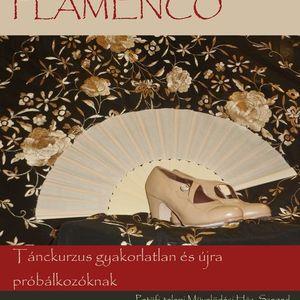 Nuestro Camino al Flamenco