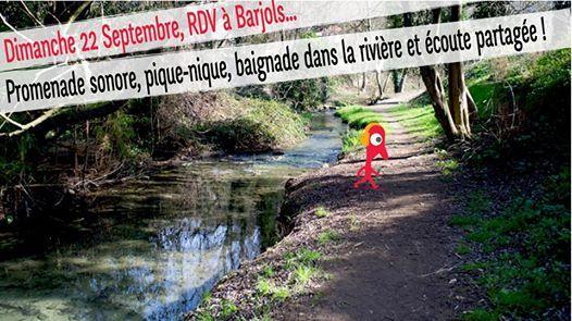 Radio Grenouille vous emmne en Provence Verte