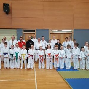 Lyons karate winter course and Xmas party