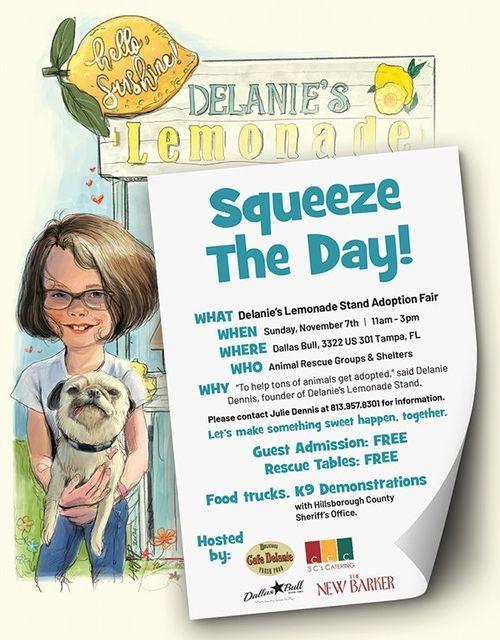 Delanie's Lemonade Stand Adoption Fair, 7 November   Event in Tampa   AllEvents.in